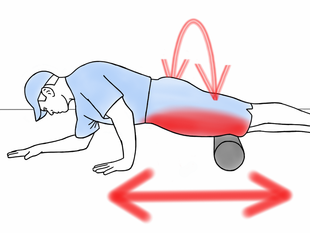 the use of a foam roller for hip flexors