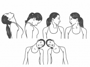 Neck Mobility - The Basic Range of Motion for the Neck