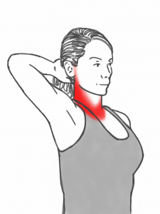 Neck Stability - Neck Retraction Exercise against a Hand
