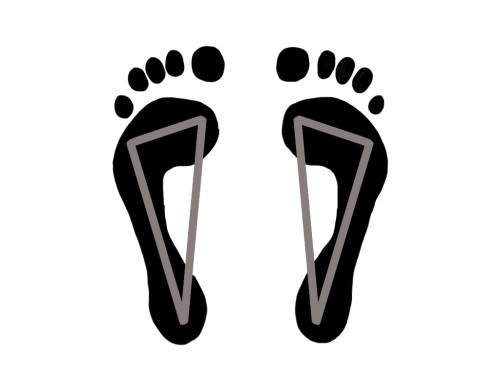 PreHab Exercises - Foot Tripod for Foot and Ankle Stability
