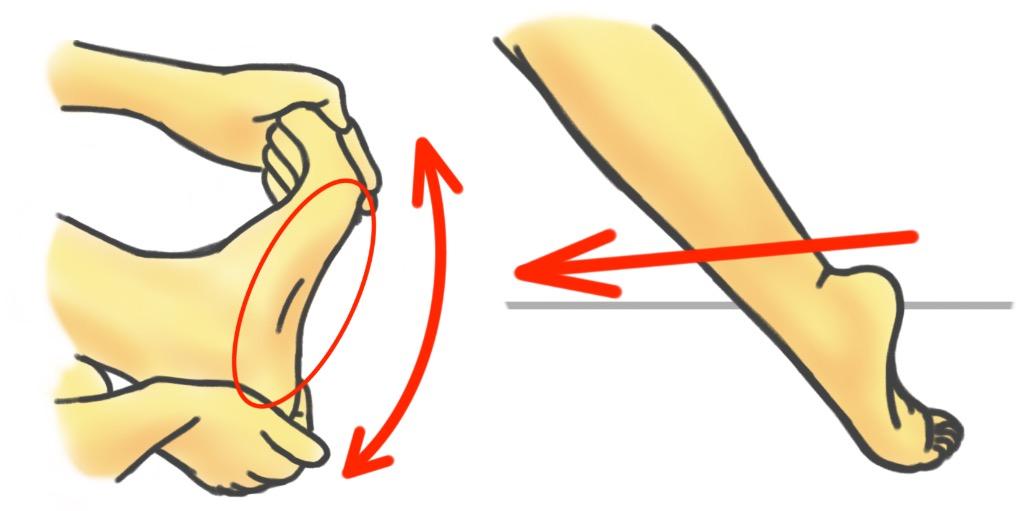 PreHab Exercises - Mobility Exercises for the Foot - Plantar Fascia Stretch and Plantar Flexion Stretch