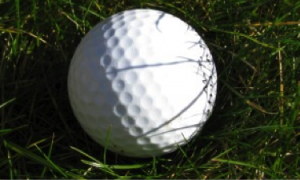 Soft Tissue Therapy Tool - Golf Ball