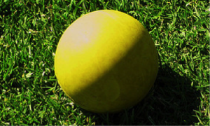 Soft Tissue Therapy Tool - Lacrosse Ball
