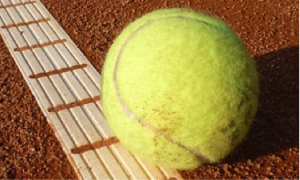 Soft Tissue Therapy Tool - Tennis Ball