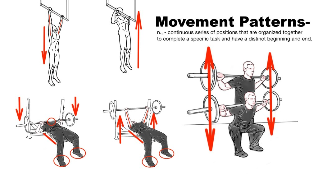 Movement Patterns - Example in Exercises - Squat - Bench Press - Pull-up