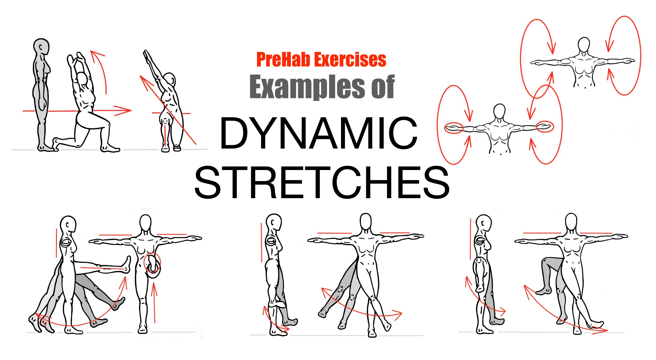 PreHab Exercises - Effective Stretching Techniques - Examples of Dynamic Stretches