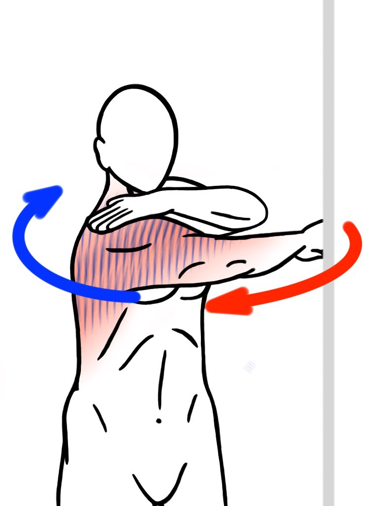 Stretching - PNF Stretch - Contract:Relax - Wall Assisted Shoulder Abduction (Arm Swing or Arm Whip) for Thoracic Spine and Shoulder Mobility - Stretch for Trapezius (Upper Back), Lats and Shoulders