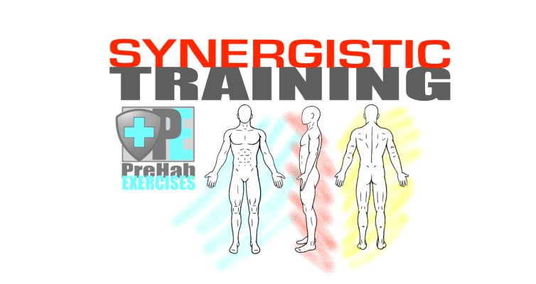 PreHab Exercises - Synergistic Training