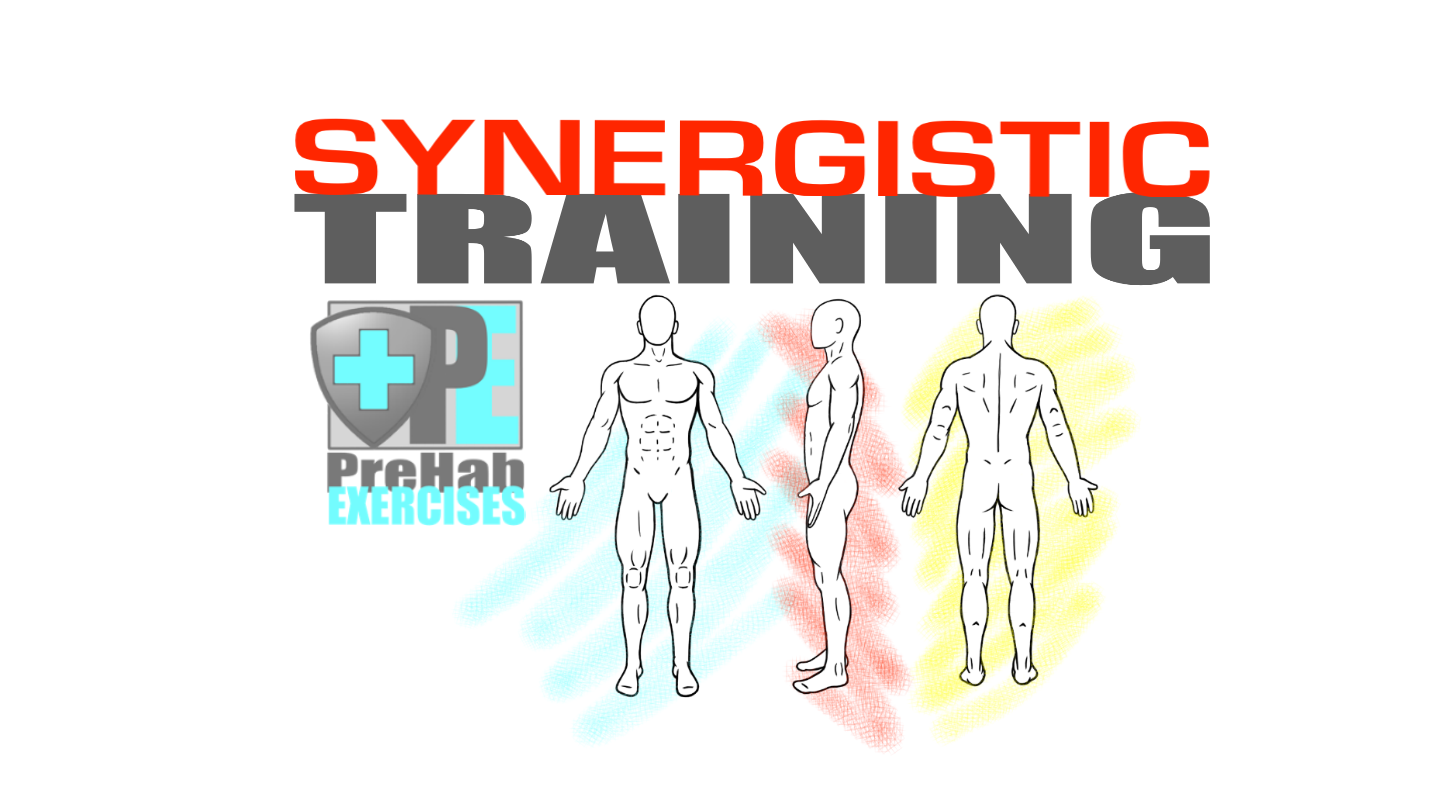 Synergistic Training - Improve Mobility, Stability and Strength