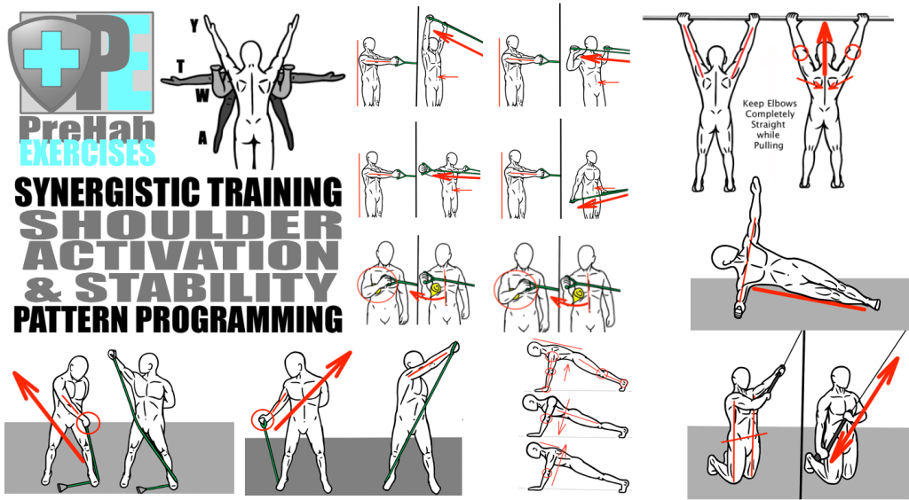 Synergistic Training - Pattern Programming for Shoulder Activation and Stability
