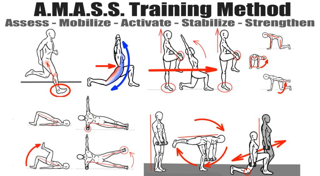 Synergistic Training - Use of the AMASS Training Method - Asess - Mobilize - Activate - Stabilize - Strengthen