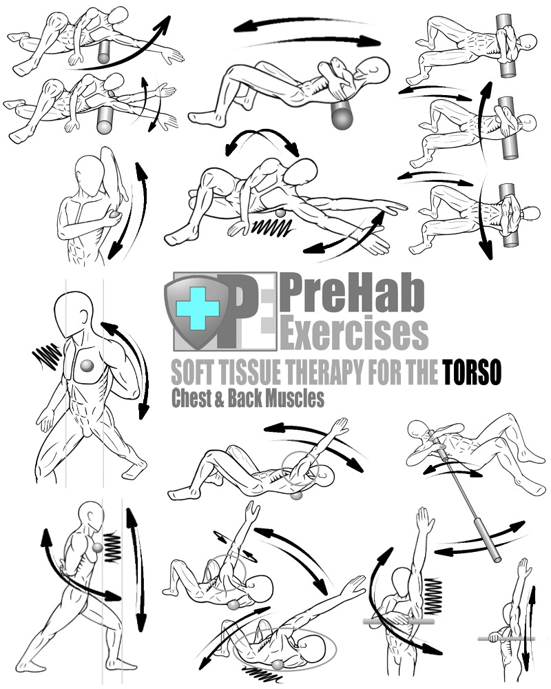 prehab-exercise-book-appendix-soft-tissue-therapy-for-the-torso-chest-and-back-pectorals-latissimus-dorsi-rhomboids-trapezius