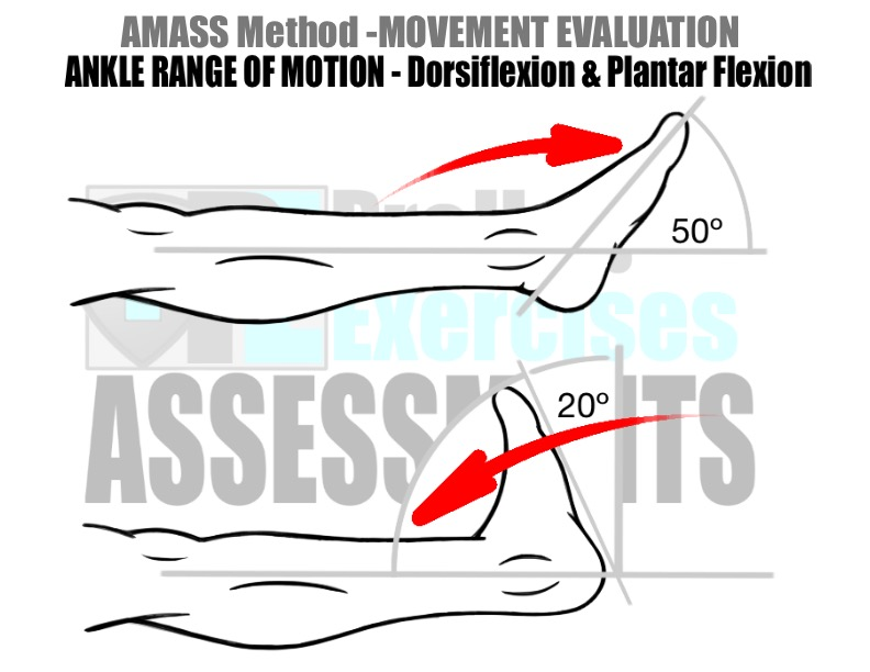prehab-exercises-amass-method-movement-evaluation-for-running-ankle-range-of-motion-dorsiflexion-and-plantar-flexion