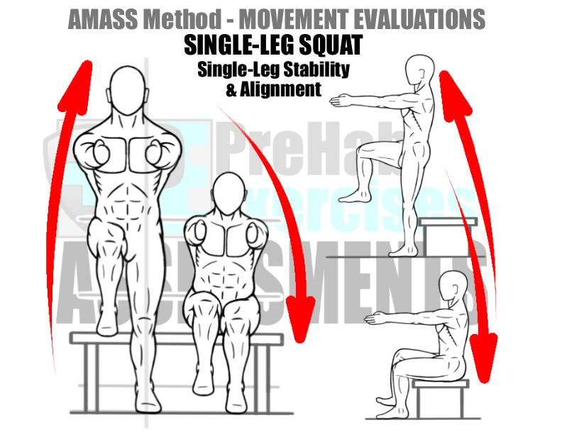 prehab-exercises-amass-method-movement-evaluation-for-running-single-leg-squat-to-and-from-bench-for-single-leg-stability-and-alignment
