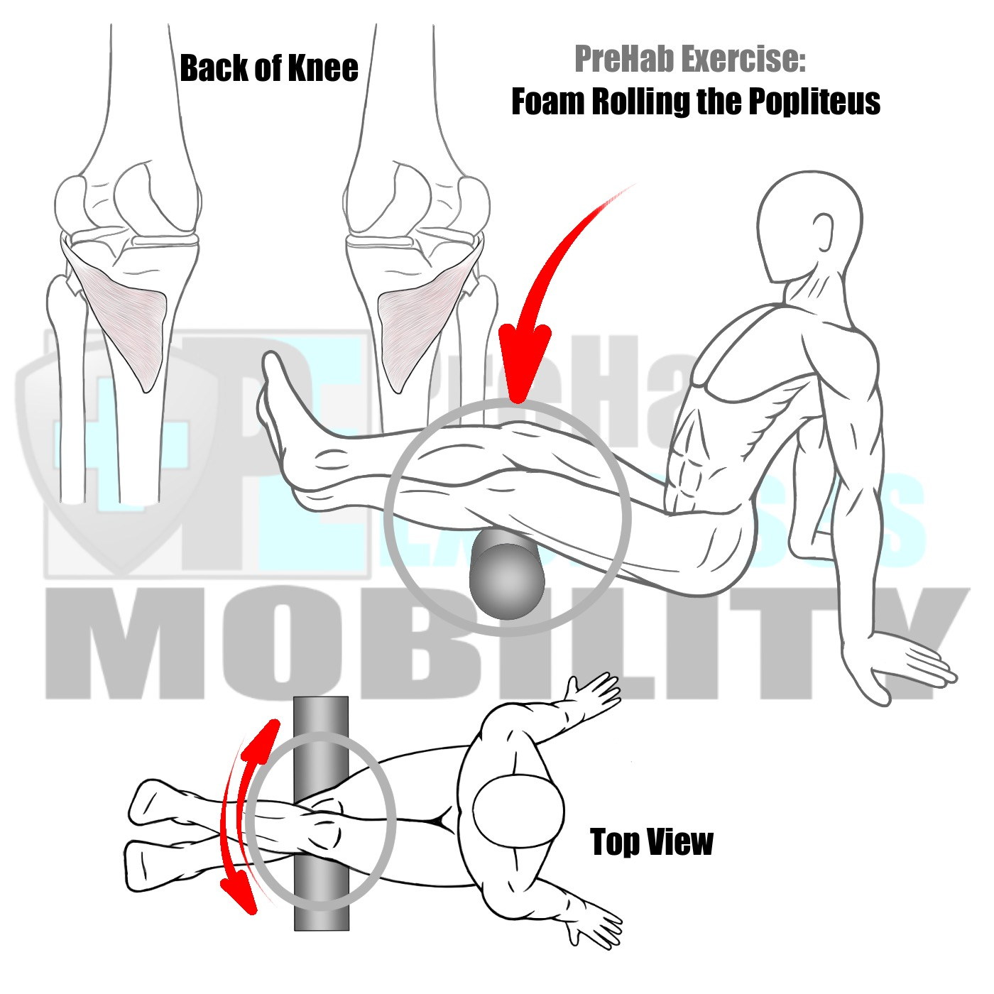 prehab-exercises-foam-rolling-the-popliteus-muscle-knee-alignment-and-stability