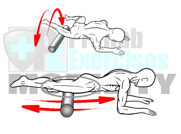 Guide to Foam Rolling - A Basic Blueprint for Soft Tissue ...